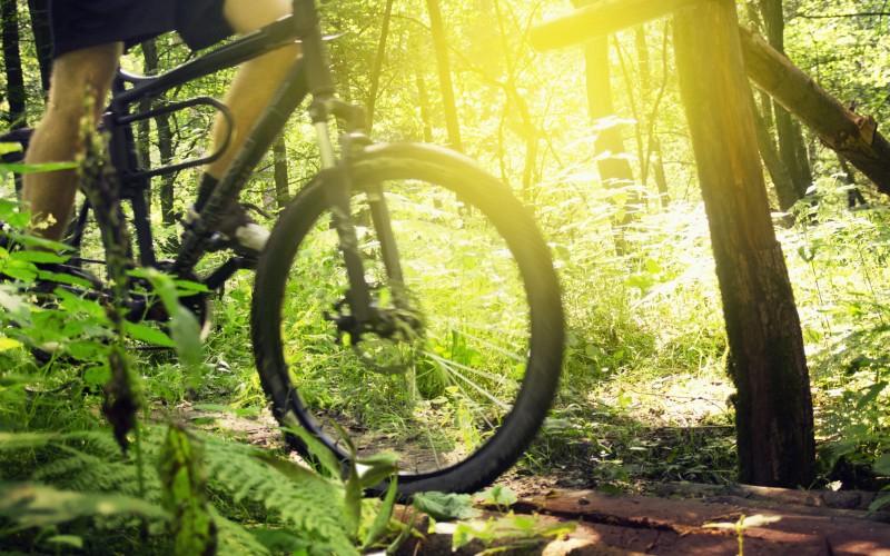 Mountainbiken am Chiemsee